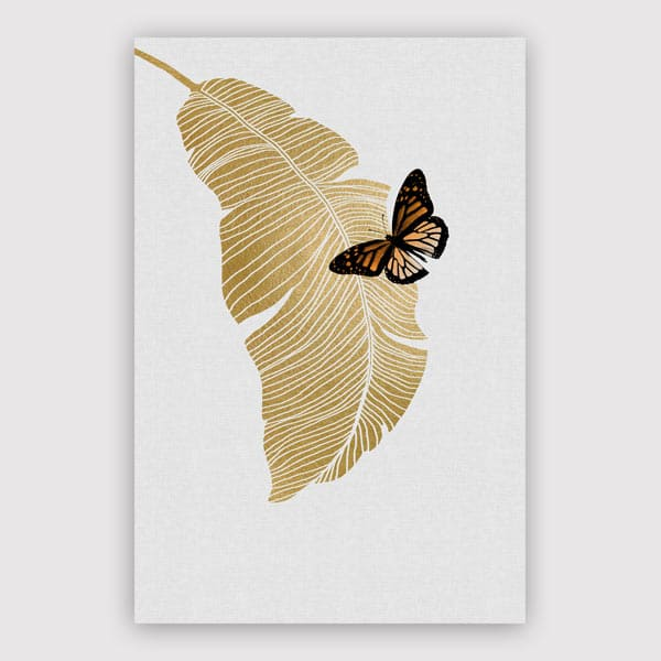 600x600-Butterfly-_-Palm-Leaf