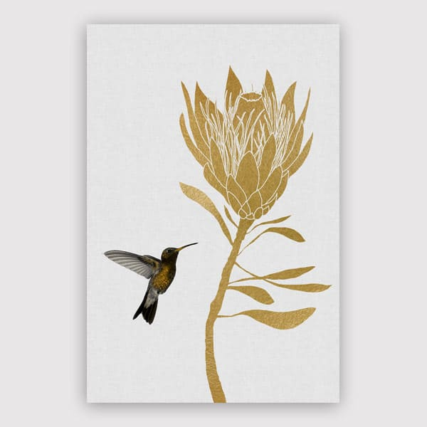 600x600-Hummingbird-_-Flower-I