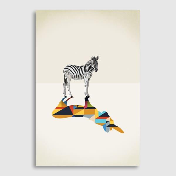 600x600-future-image-Walking-Shadows_Zebra