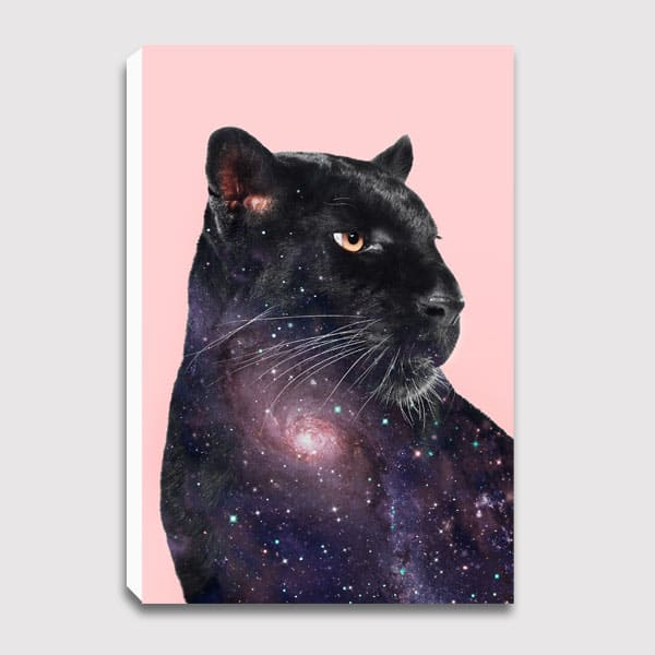 600x600-canvas-GALAXY_PANTHER