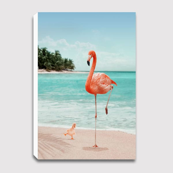600x600-canvas-WANNABE_FLAMINGO